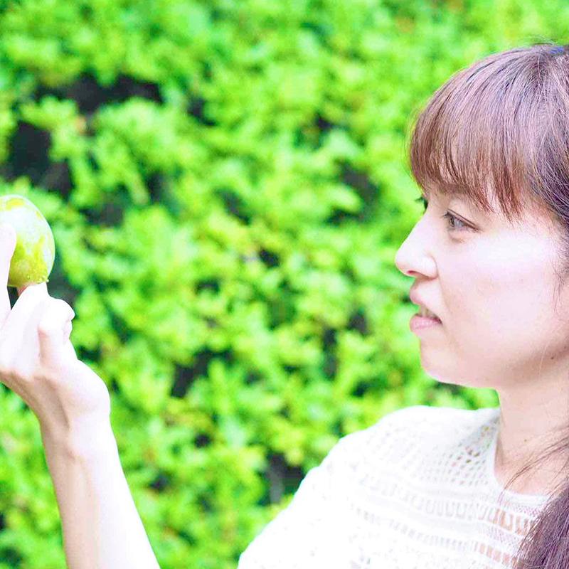 バッチフラワーレメディ療法 〜 38種類の花のエネルギーで心を癒す 〜 【オンラインセラピー】