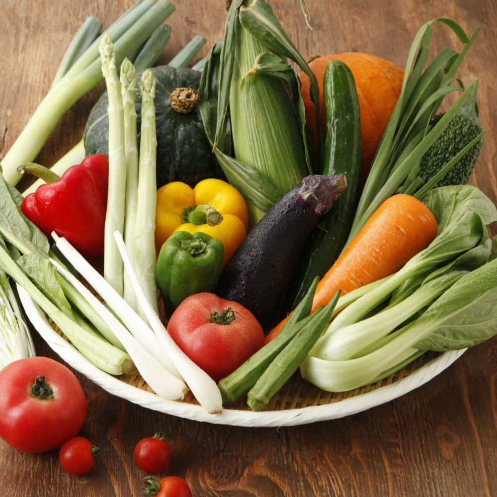 契約農家さんの軒先で集荷した新鮮野菜セット10品目以上