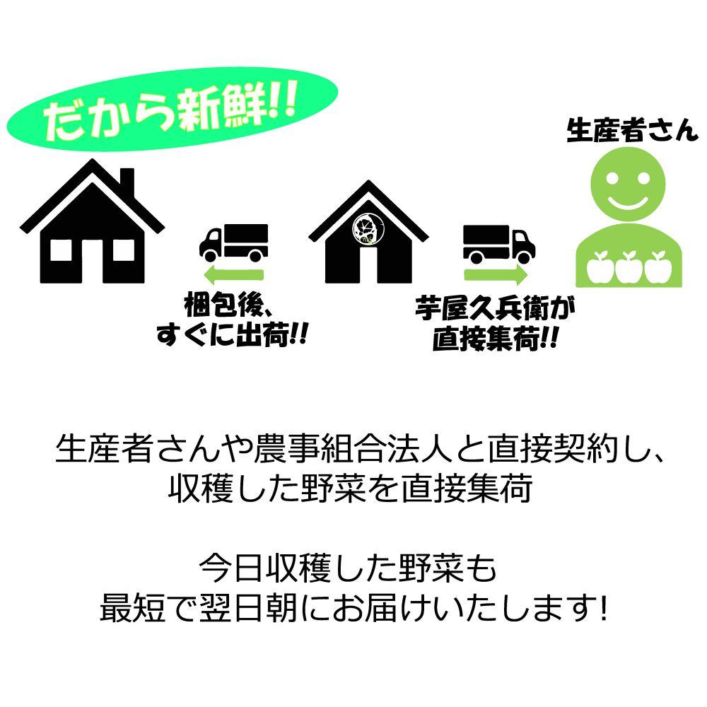 茨城県・千葉県産 なす (2〜4本) 300g