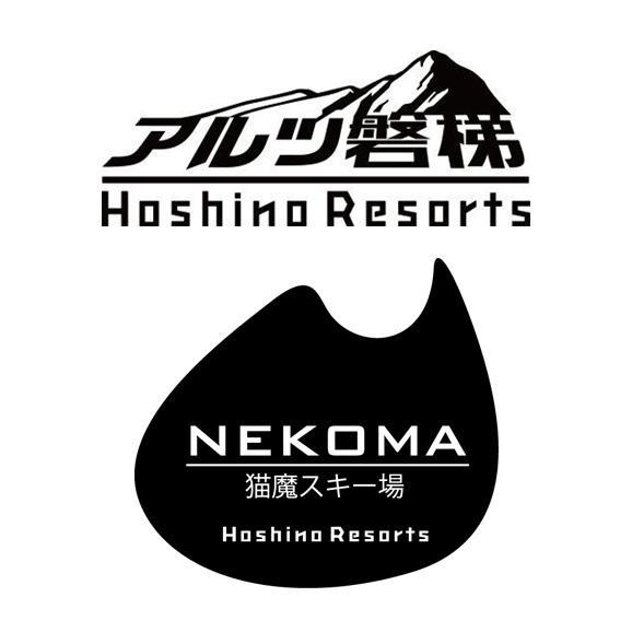星野リゾート アルツ磐梯・猫魔スキー場 シーズン前早割 共通リフト1日券<全日┃小人>