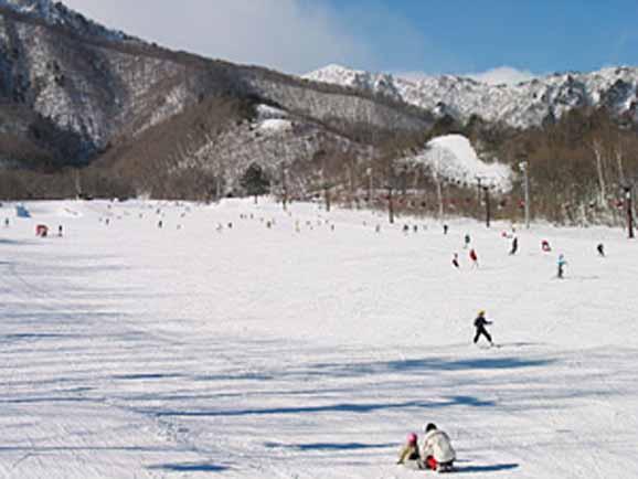 爺ガ岳スキー場 1日券<全日┃大人>