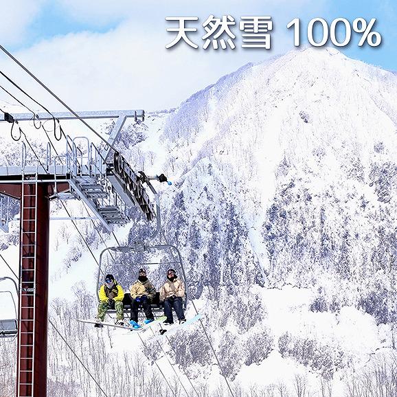 黒伏高原スノーパーク ジャングル・ジャングル 【10月限定】早割シーズン券<大人>