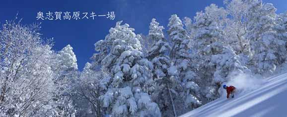 奥志賀高原スキー場 リフト1日券<全日>