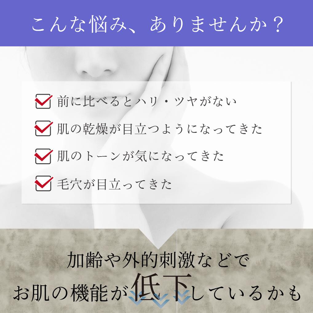【アイナチュラプレミアム】 Ns Q10ローション