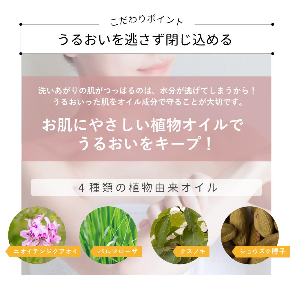 【アイナチュラプレミアム】 Ns ボディウォッシュジェル