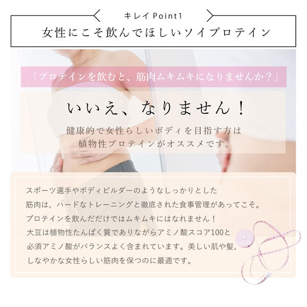 【アイナチュラプレミアム】 ナイスプロテイン(抹茶)