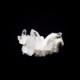 【カンチェンジュンガヒマラヤ産】水晶クラスター【KCJ0011】