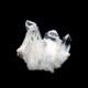 【カンチェンジュンガヒマラヤ産】水晶クラスター【KCJ0021】