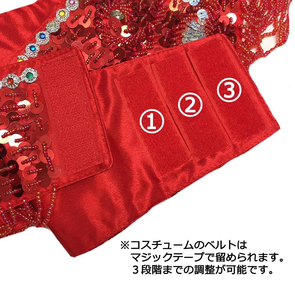 ★送料無料!超特価!★・【エリクサー】オリエンタルコスチューム(ブラ+ベルト)