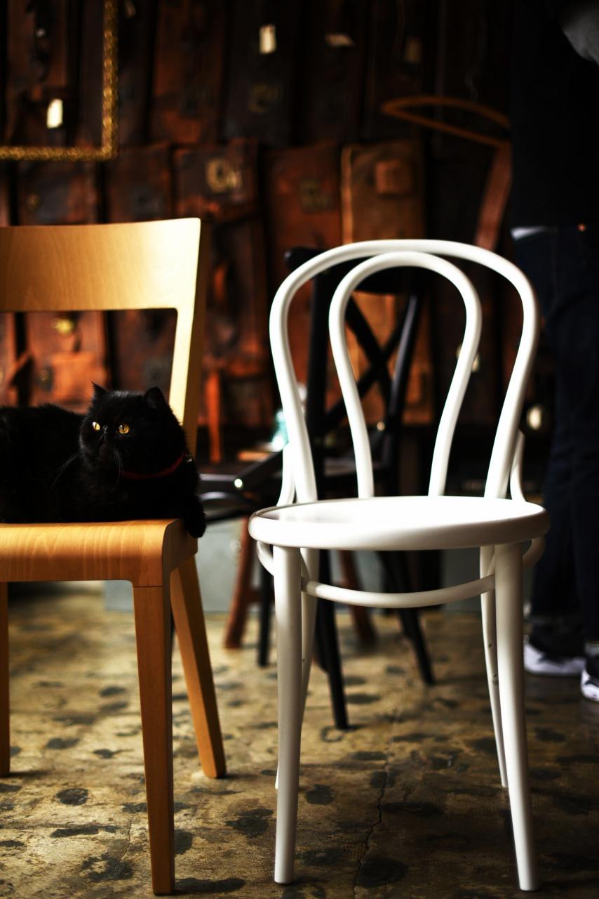 TON No.18 311018 2脚セット ミリタリーグリーン マリーンブルー ホワイト