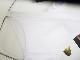 完全別注【極パン®きょくぱん】ホワイト ロゴ「あり」 透けにくい生地 競パン