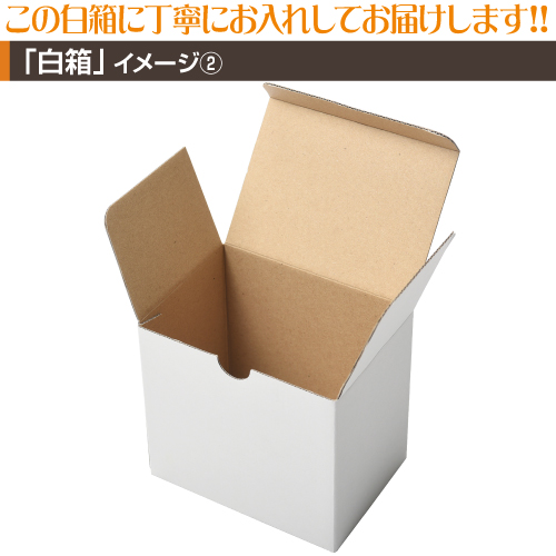 同人・コミケマグカップ【定番ショート10個〜29個】