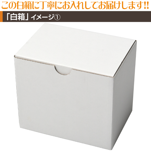 機関車【定番】マグカップ