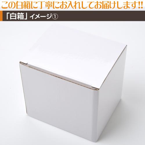 プラスチックマグカッププリント【100個〜199個】