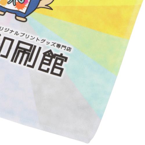 マイクロファイバータオル【200枚〜299枚】