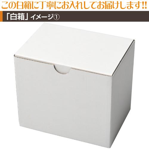 銀色マグカッププリント【1個〜4個】