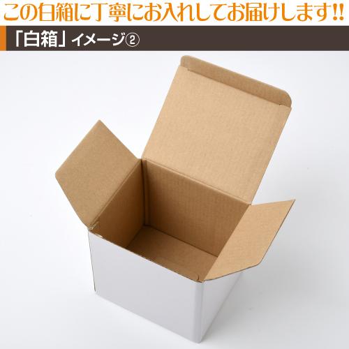 プラスチックミニマグカッププリント【10個〜29個】