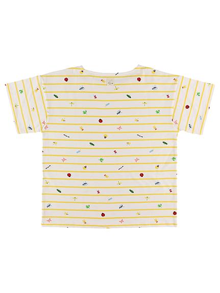 抗ウィルスなど高機能!大人も!12昆虫大集合ボーダーTシャツ レッド オーガニックコットン使用