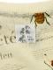 OTONA Encyclopedie 再生素材スウェット blanc