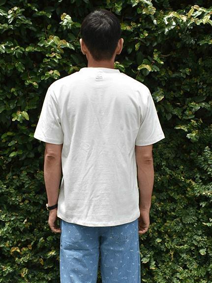 大人も!太陽に当たると昆虫ゲット!?虫眼鏡クローバーTシャツ ホワイト オーガニックコットン使用