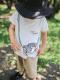 【予約商品】太陽に当たると昆虫ゲット!?虫かごTシャツ 全3タイプ オーガニックコットン【6月中旬発送予定】