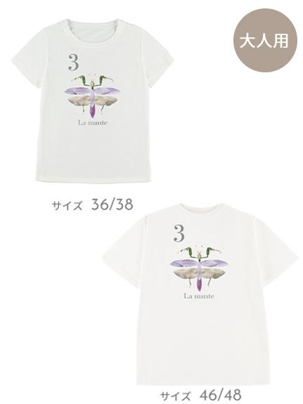 【予約商品】OTONA Nombre プリント100%再生ペットボトルTシャツ カマキリ3 blanc【2月中発送予定】