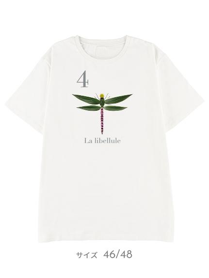 【予約商品】OTONA Nombre プリント100%再生ペットボトルTシャツ トンボ4 blanc【2月中発送予定】