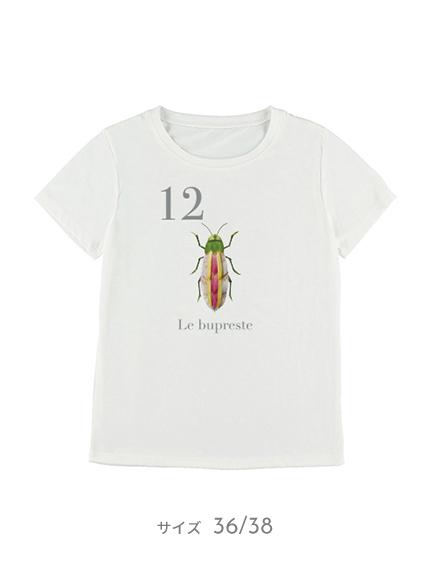【予約商品】OTONA Nombre プリント100%再生ペットボトルTシャツ タマムシ12 blanc【3月中発送予定】