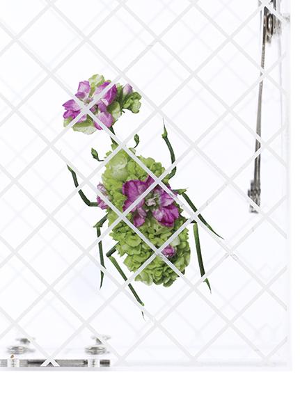 【予約商品】Special アクリルバッグ Insecte transparent【2月中発送予定】