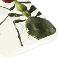 【予約商品】Nombre iPhoneケース アリ2 transparent【2月中発送予定】