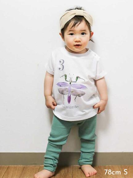 KODOMO Nombre プリント100%再生ペットボトルTシャツ カマキリ3 blanc