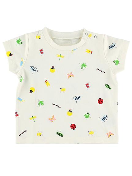 【予約商品】ランダム12昆虫大集合Tシャツ アイボリー オーガニックコットン使用【6月中旬発送予定】
