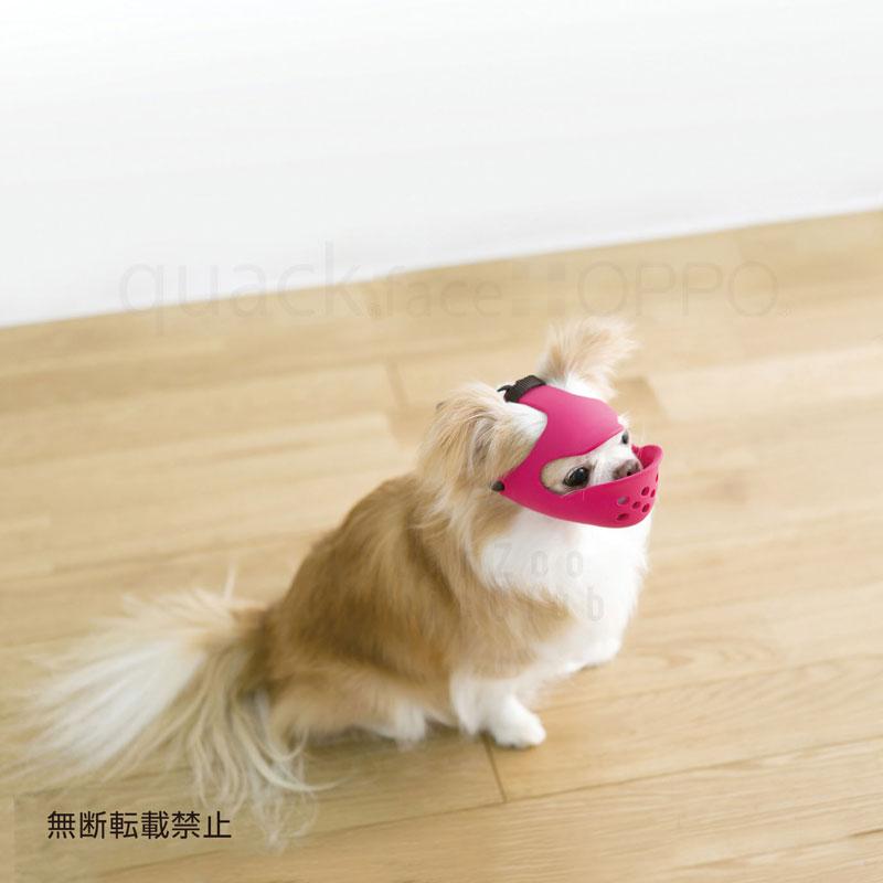 OPPO quack face (クアック フェイス) S