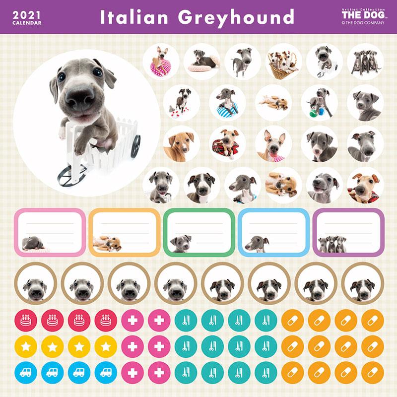 THE DOG 2021年 カレンダー イタリアン・グレイハウンド