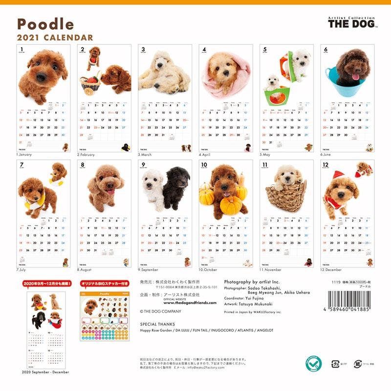THE DOG 2021年 カレンダー プードル