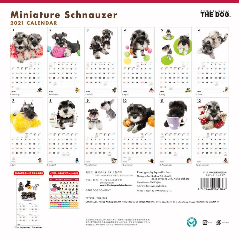 THE DOG 2021年 カレンダー ミニチュア・シュナウザー