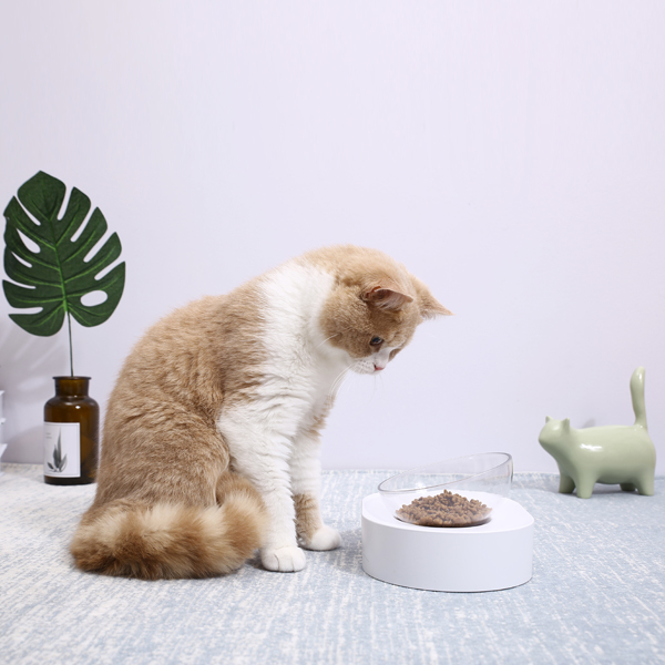 PETKIT(ペットキット)フレッシュ・ナノ/シングル