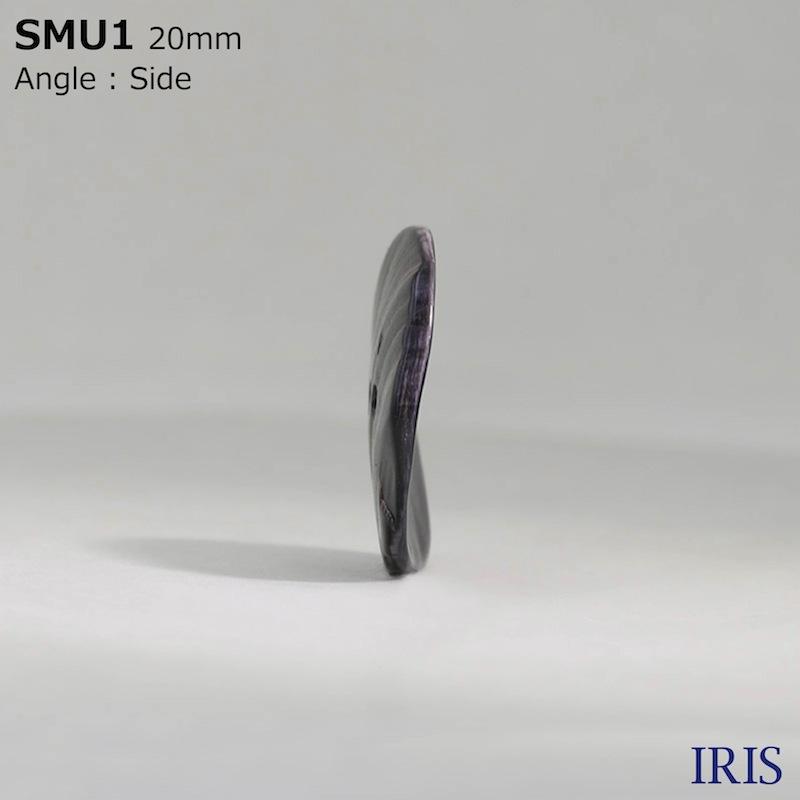 SMU1 黒蝶貝 表穴2つ穴ボタン  7サイズ1色展開