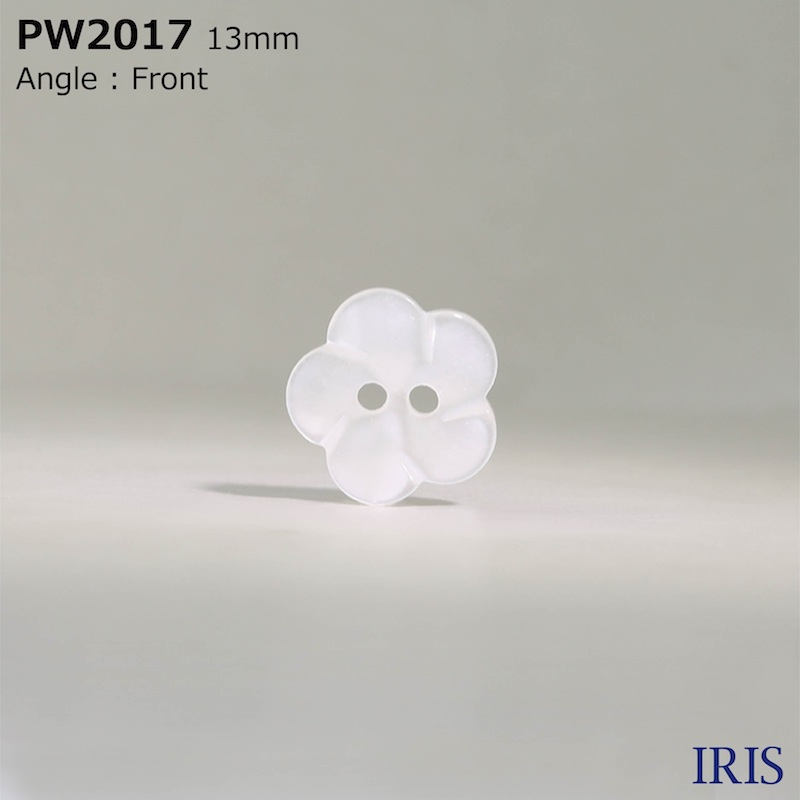 PW2017 ポリエステル樹脂 表穴2つ穴ボタン  2サイズ1色展開