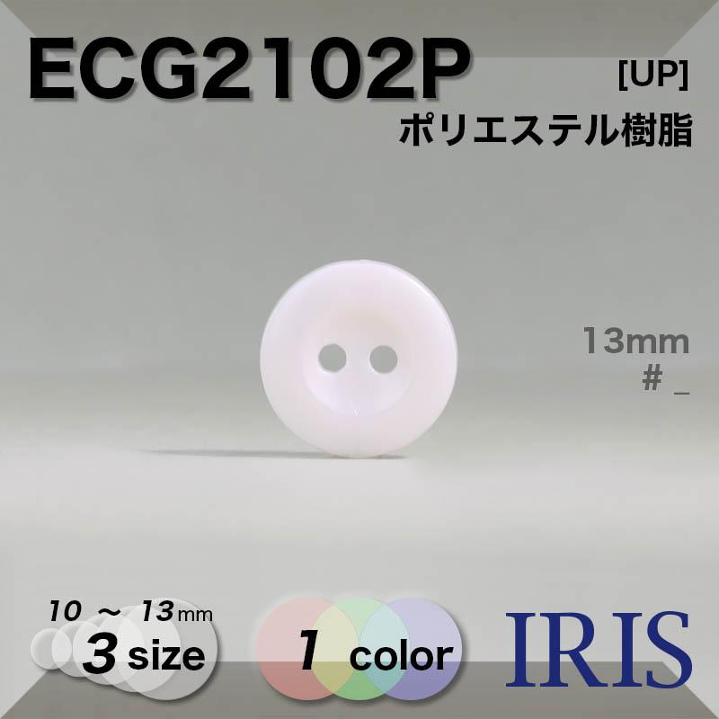 ECG2102P ポリエステル樹脂 表穴2つ穴ボタン  3サイズ1色展開