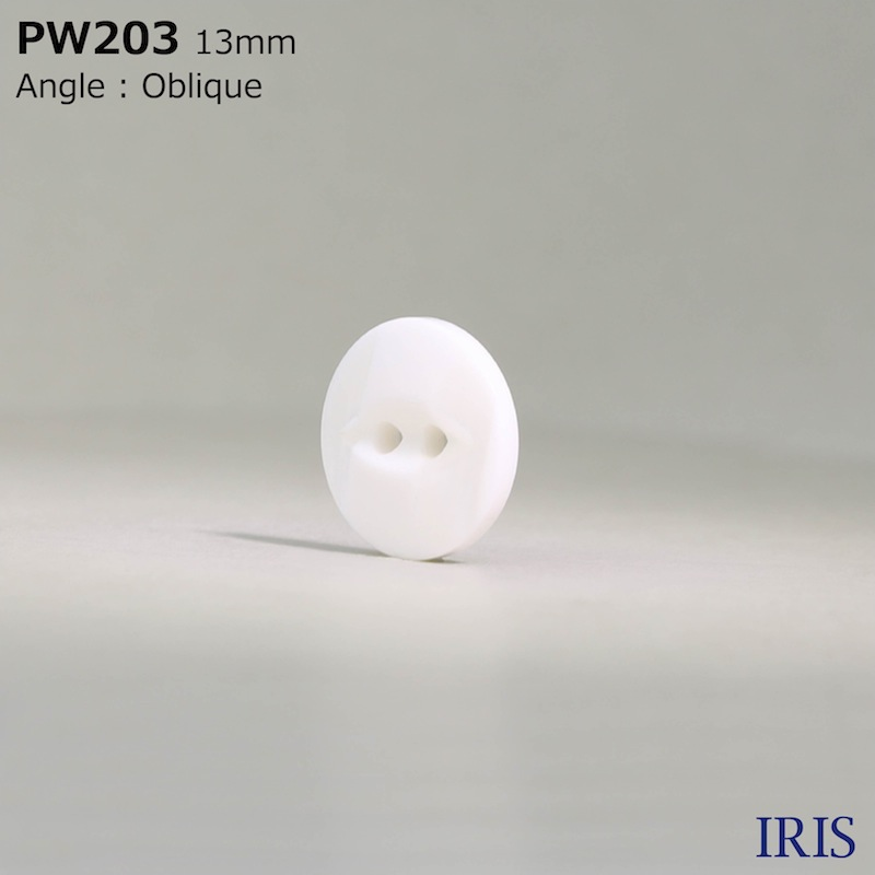PW203 ポリエステル樹脂 表穴2つ穴ボタン  3サイズ1色展開