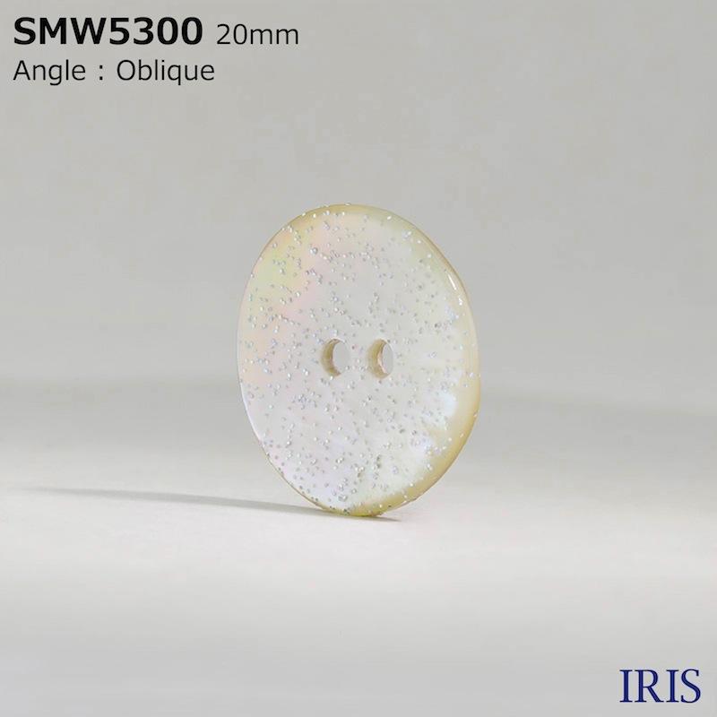 SMW5300 貝全般 表穴2つ穴ボタン  6サイズ1色展開