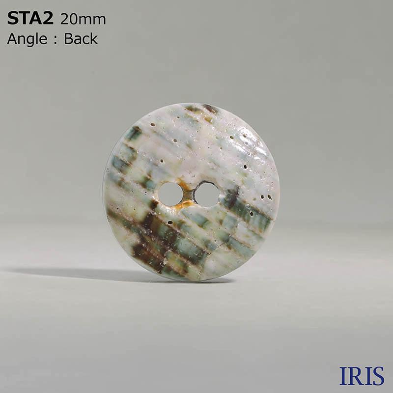 STA2 貝全般 表穴2つ穴ボタン  4サイズ1色展開