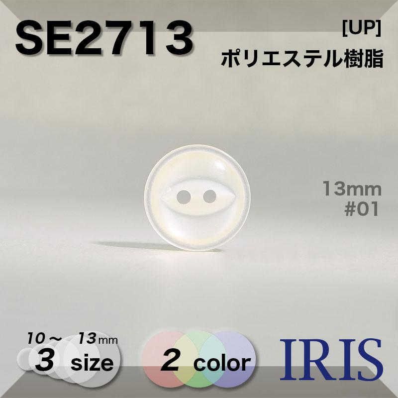 SE2713 ポリエステル樹脂 表穴2つ穴ボタン  3サイズ2色展開