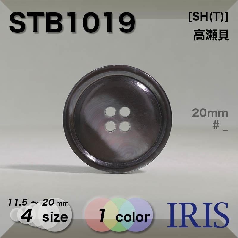 STB1019 高瀬貝 表穴4つ穴ボタン  4サイズ1色展開
