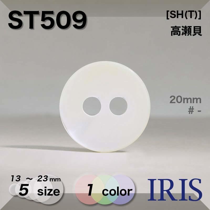 ST509 高瀬貝 表穴2つ穴ボタン  5サイズ1色展開