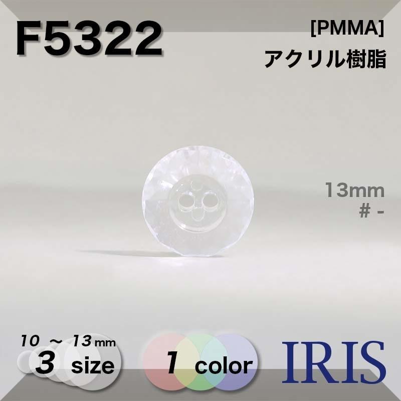 F5322 アクリル樹脂 表穴2つ穴ボタン  3サイズ1色展開