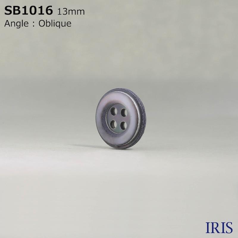 SB1016 黒蝶貝 表穴4つ穴ボタン  4サイズ1色展開