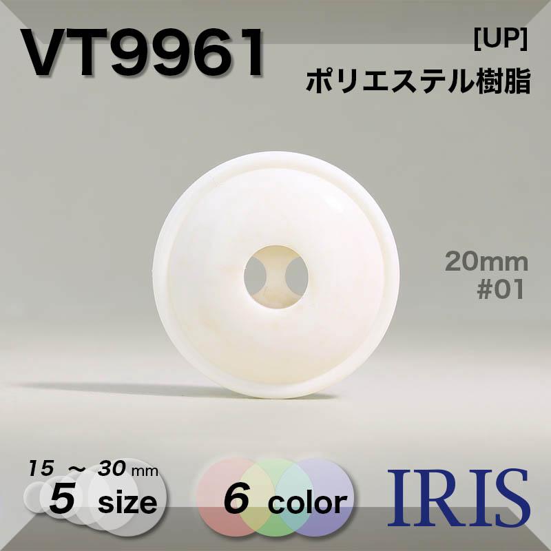 VT9961 ポリエステル樹脂 表穴2つ穴ボタン  5サイズ6色展開