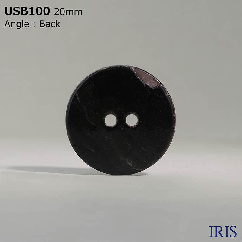 USB100 黒蝶貝 表穴2つ穴ボタン  7サイズ1色展開